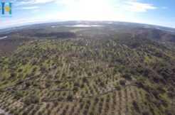 Foto Drone5